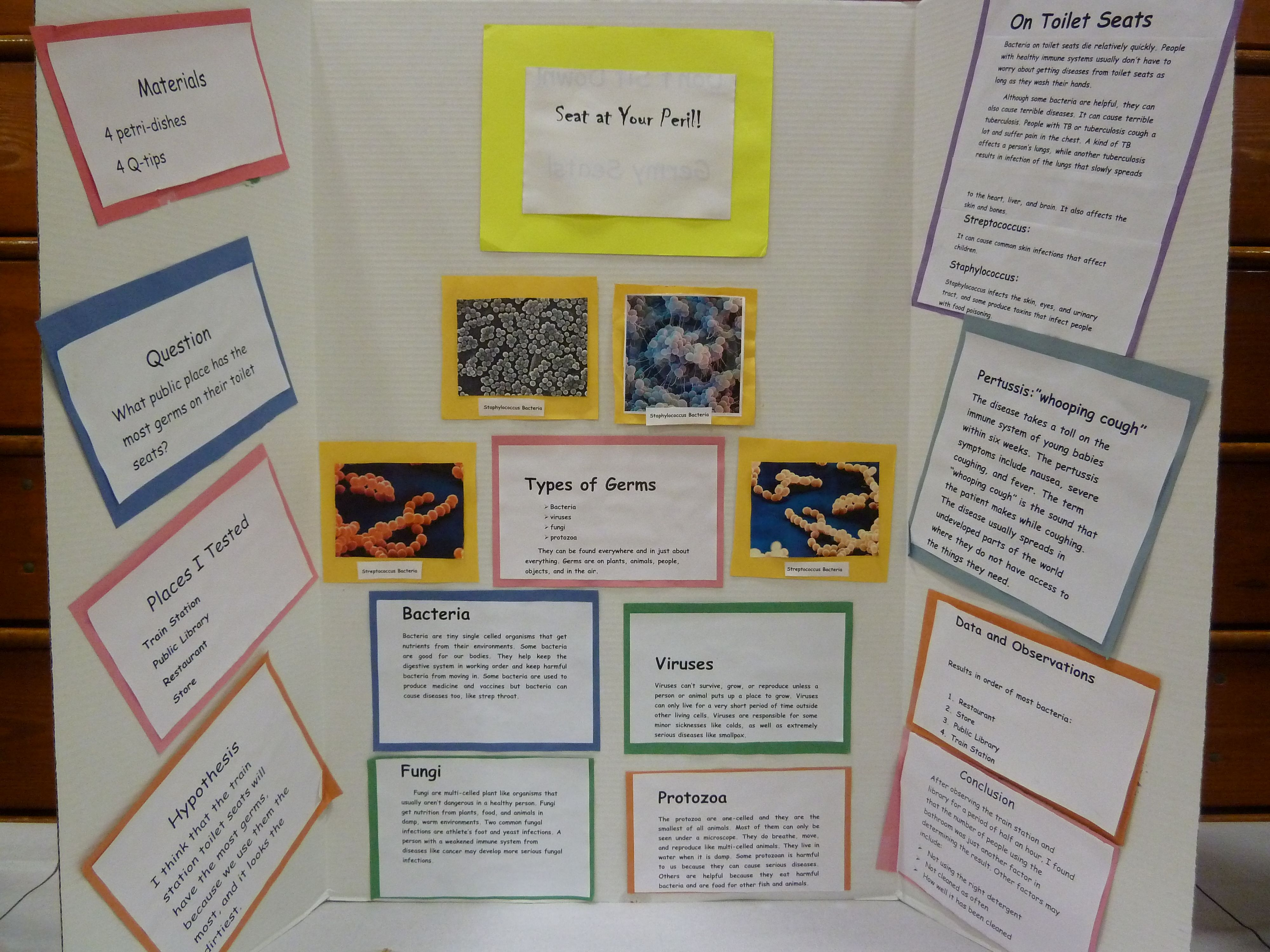 Cool science fair projects for 5th grade science fair presentation